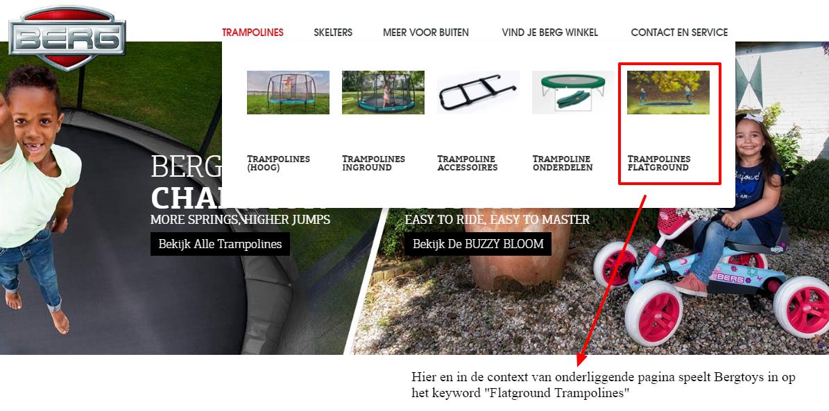 Afbeelding 11 - de benamingen van productcategorieën in de webshop van Bergtoys