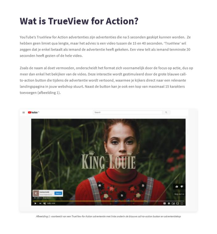 Preview WP youtube advertising