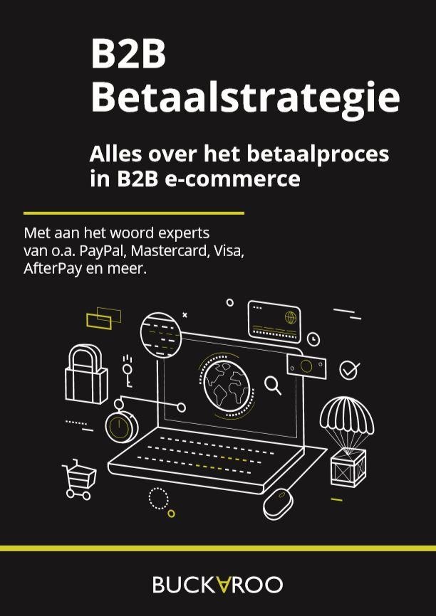 Buckaroo_voorkant_WP_B2B_betaalstrategie