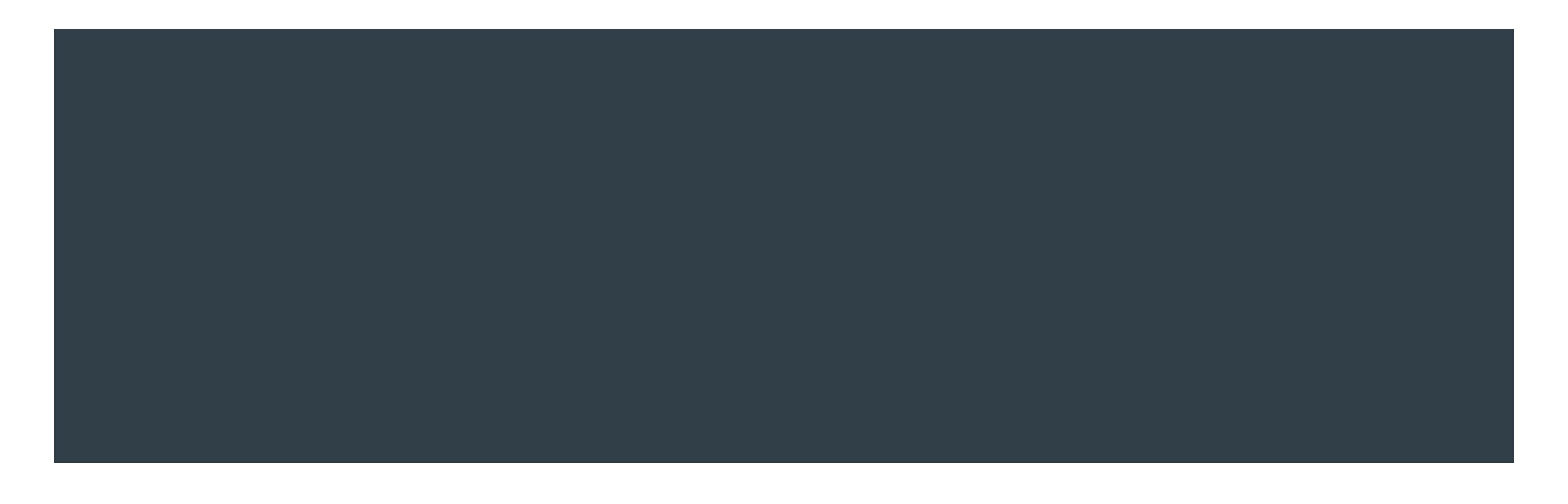 logo_in-lite